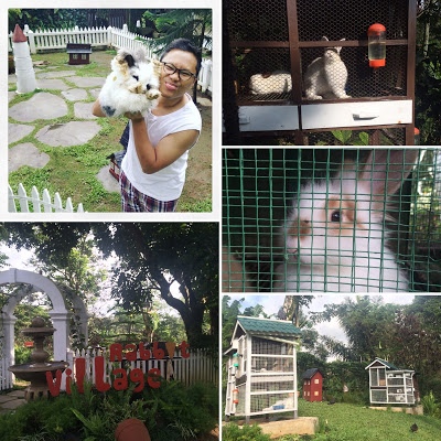 Rabbit Village di Novus Giri Resort Cipanas