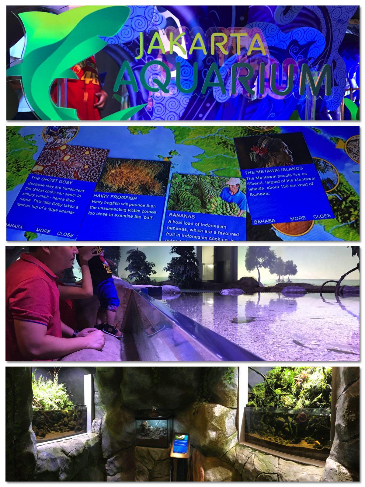 Suasana Jakarta Akuarium